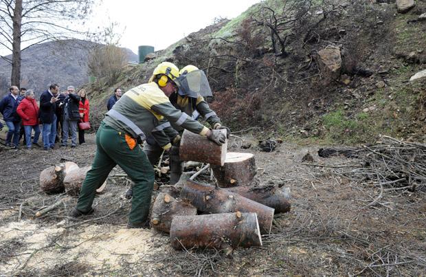Brigadistas de Imelsa trabajan en el cauce del río Turia en Chulilla.
