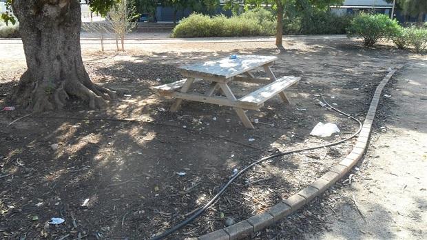 Paterna. Parc Tecnologic. Basura 1