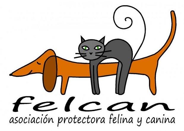 Felcan. Logo