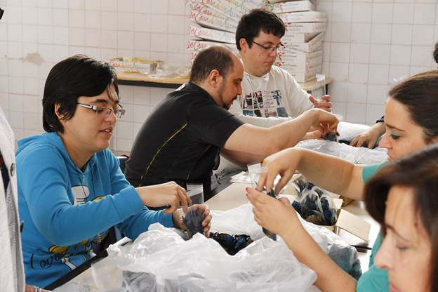 Puçol-centro-especial-empleo