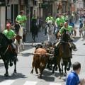 entrada de caballos