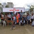 II Feria Adopción de Mascotas 1