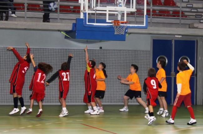 Torrent-deporte-colegios