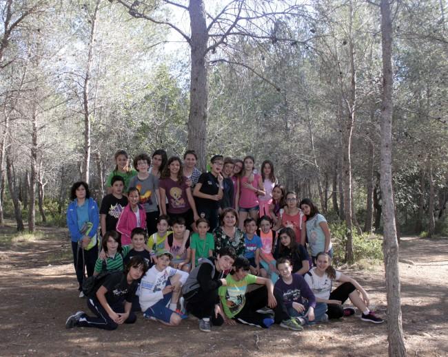 Dia_arbre_015
