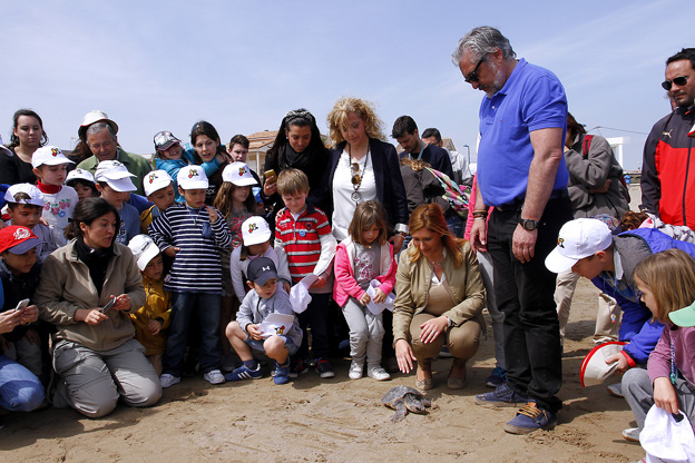 Puçol-playa-primera-tortuga