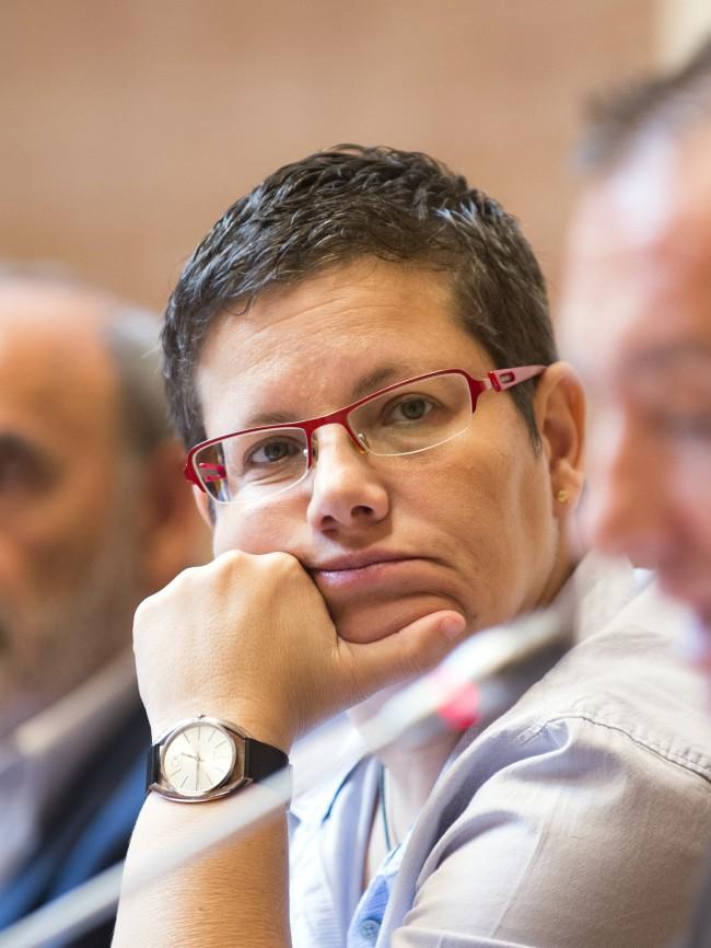diputada provincial Isabel García