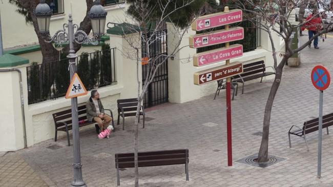 Perros en Paterna