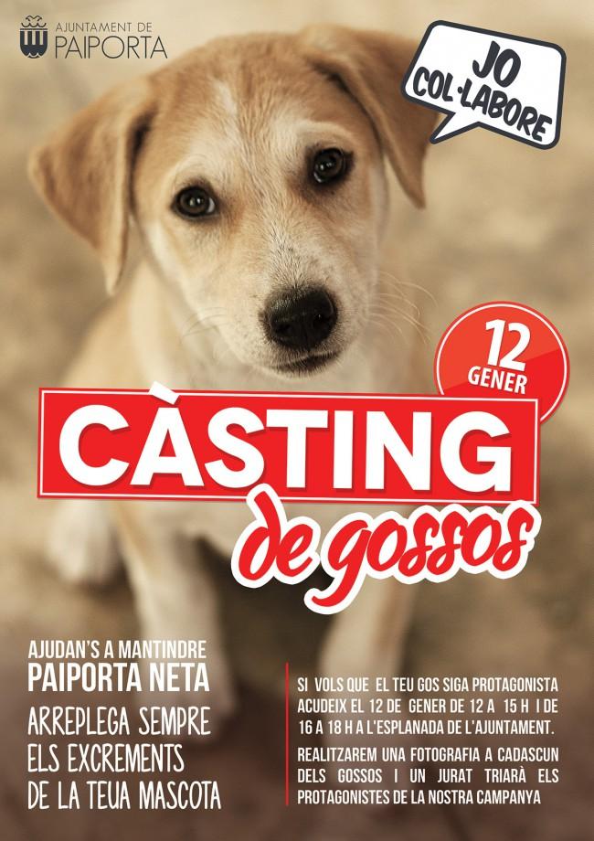 casting_gossos_paiporta