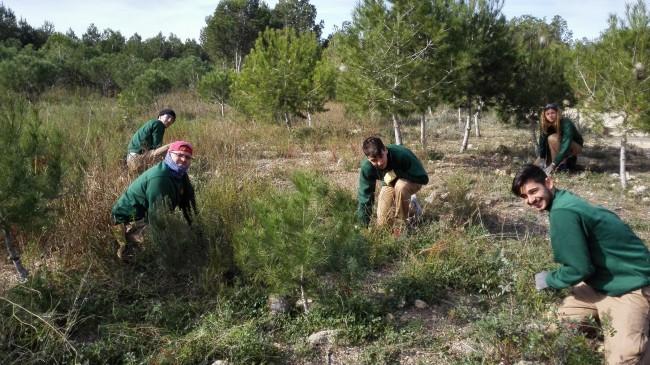 """L'alumnat del Programa """"Millora i Ocupa't"""" realitza tasques forestals al Clot de les Tortugues f"""