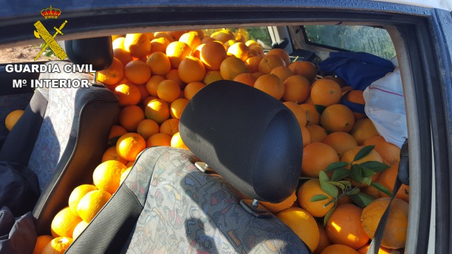 naranjas robadas