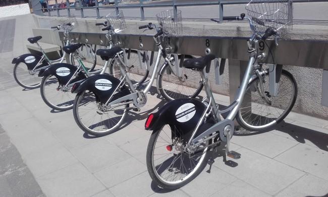 bicicletas alquiler paterna