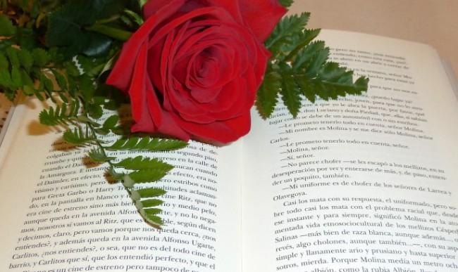flores-y-libros-burjassot