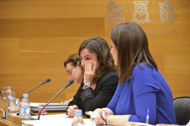 Corts. Comisión investigacion accidente metro. Beatriz Garrote