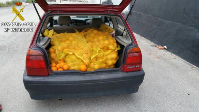 Guardia Civil. robos naranjas