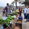 mercado artesano y ecológico alboraia