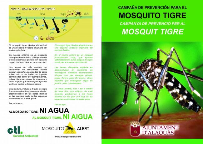 mosquito tigre alaquàs (1)