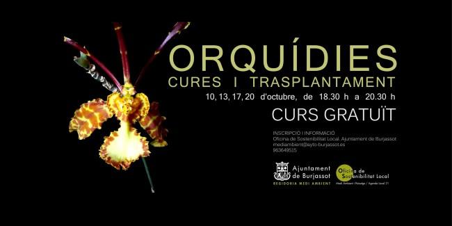 curso-orquideas