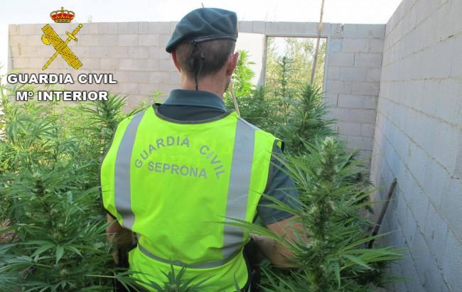guardia-civil-marihuana-picassent
