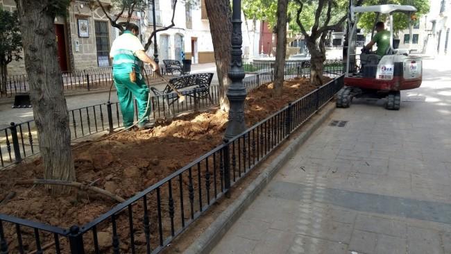 replantació de la zona enjardinada de Plaça Cor de Jesús