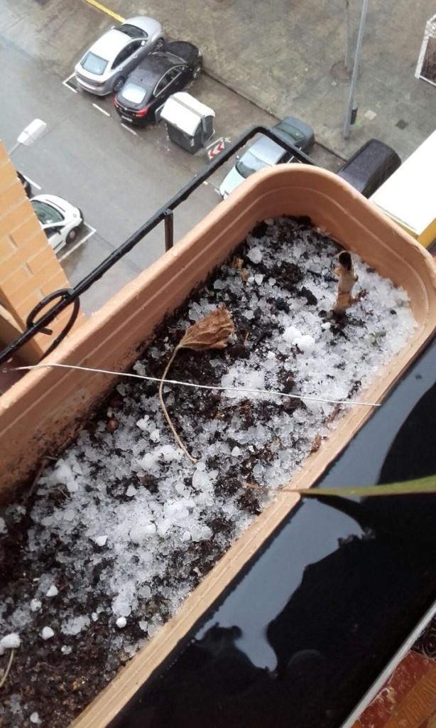 Nieve Horta