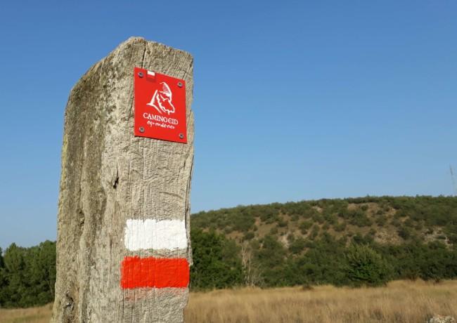 El Consorcio Camino del Cid concluye la campaña 2017 de conservación y señalización de la ruta instalando 2.914 nuevas señales
