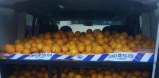 naranjas robadas Torrent