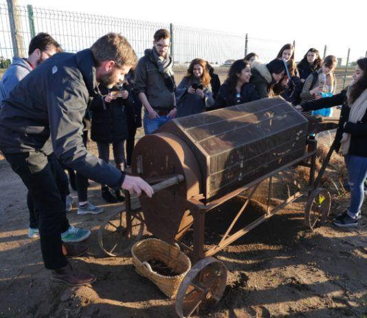 estudiantes oxford visitan Alboraya