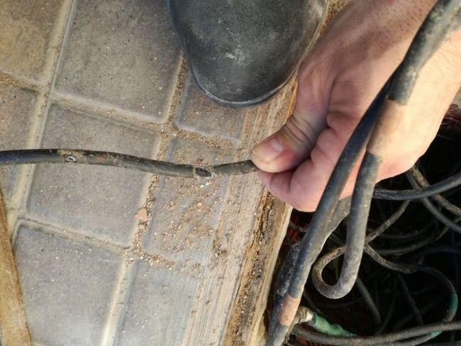 Un problema de roedores obliga a Godella a reforzar los cables de la luz para evitar más apagones