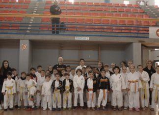 Club Karate Sedaví