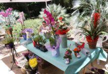 Mercado de Flores y Plantas de Torrent