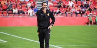 Vicente Moreno entrenador del RCD Mallorca