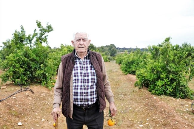 "Ramón Merino ""Collet"", Llaurador de l'any 2018"