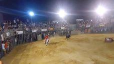 PACMA anuncia que denunciará ante la Generalitat la moto torera del Barrio del Cristo