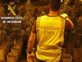 marihuana Guardia Civil