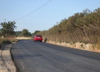 camino Camarena