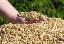 Pellets Biomasa