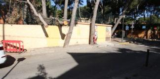 Godella arboles caidos colegio