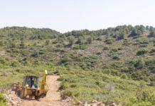 Picassent millora camins forestals