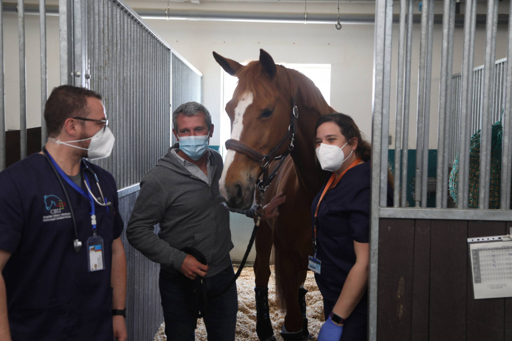Los propietarios de los caballos dados de alta en el HCV CEU por el brote de rinoneumonía han mostrado su agradecimiento al equipo veterinario, liderado por las profesoras de la CEU UCH Ana Velloso y María de la Cuesta