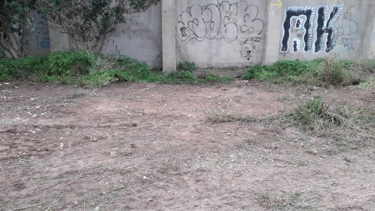 El Ayuntamiento retira en un día 7.320 kilos de residuos de vertederos irregulares en el antiguo cauce del río Túria