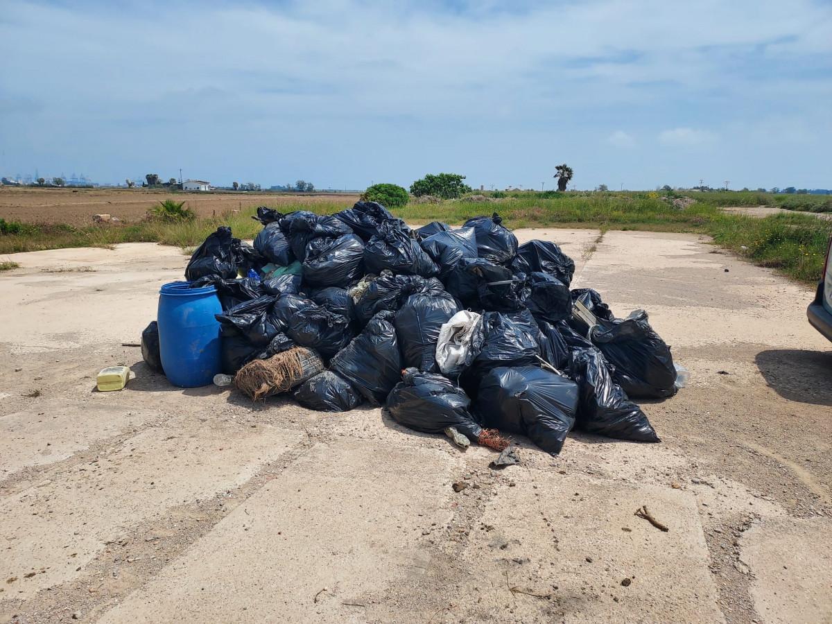 Recogen más de 1.200 kilos de residuos plásticos en una jornada de voluntariado en la marjal de Alfafar