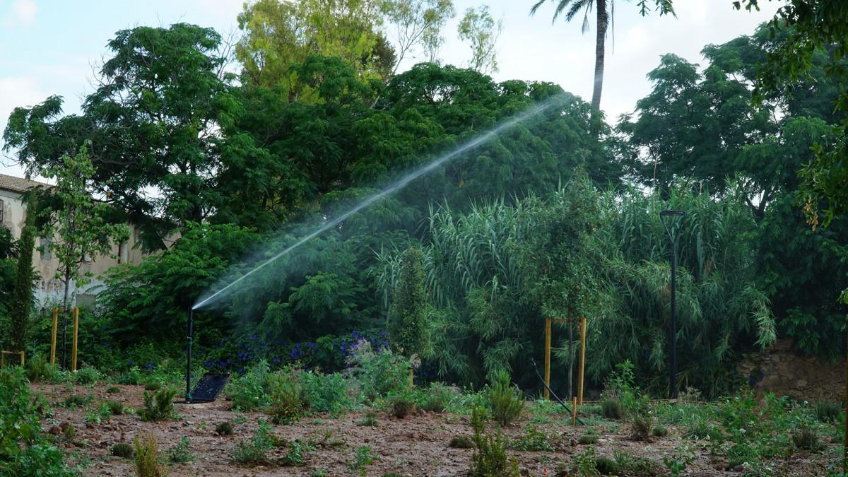El 'bosquet' sostenible de Ciudad Fallera.